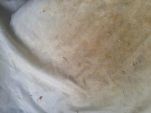 厨房の油汚れ
